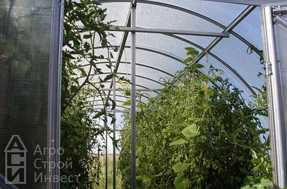 Арочная теплица и парник в Омске - высокоурожайные теплицы и парники в Омске